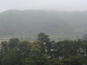 20150420_雨にけむる松山城